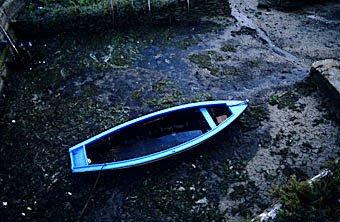 Ruderboot bei Ebbe