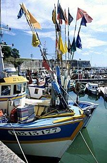 Fischerboot im Hafen von Chateau d'Oléron