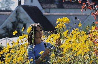 Floristin Kartause Ittingen