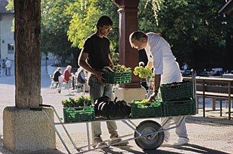 Frisches Gemüse aus dem Klostergarten Ittingen