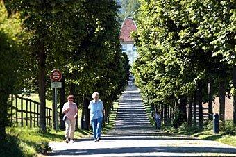 Strasse zum Schloss Waldegg bei Solothurn
