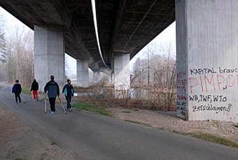Autobahnbrücke über dem Auenwald bei Schinznach
