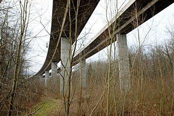 Auenwald und Autobahnbrücke bei Schinznach