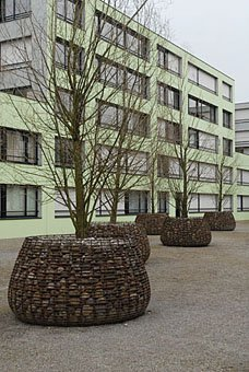 Baum im Innenhof  Pflegiareal Carmenstrasse in Zürich