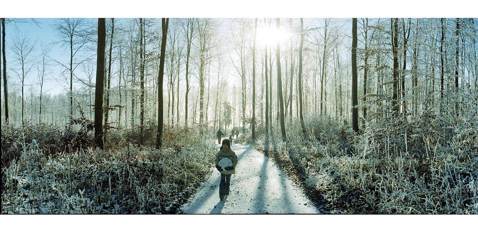 Wälder_004