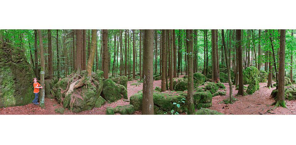 Wälder_006